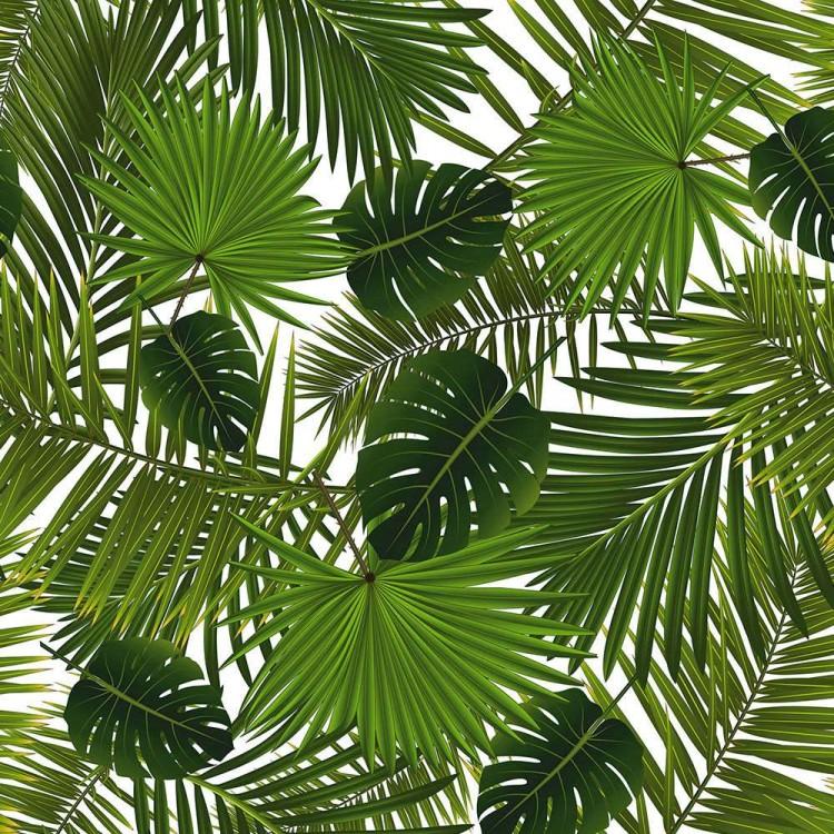 Algodón estampado hojas tropicales